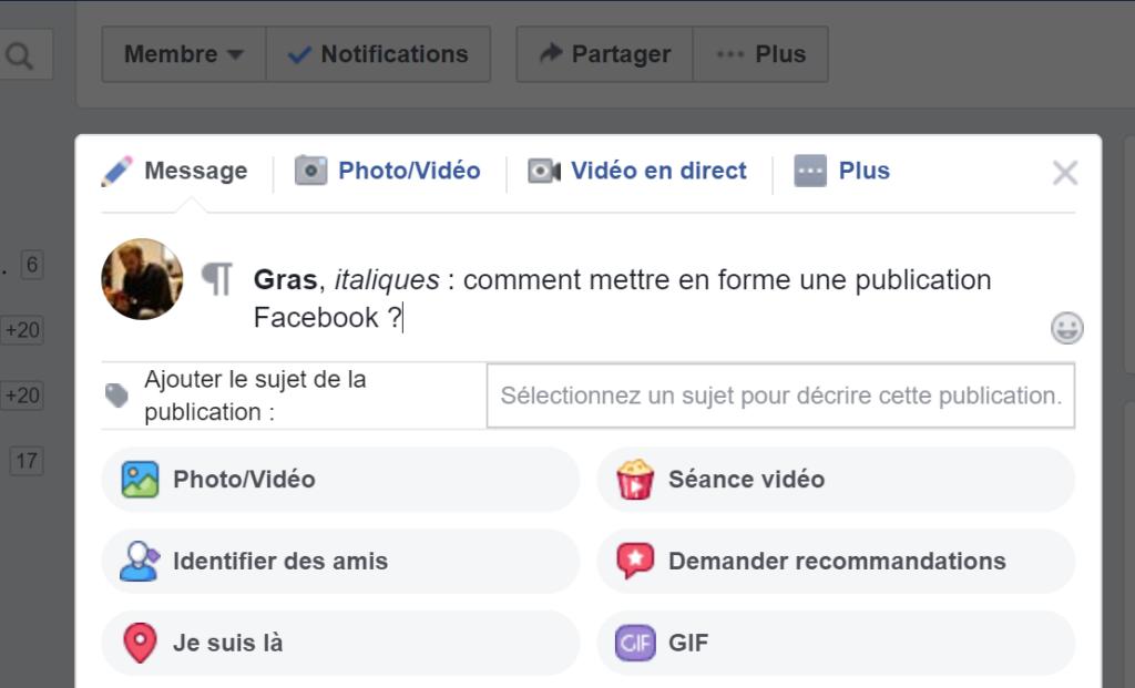 camille-carollo-gras-italiques-mettre-forme-publication-facebook