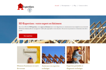 sd-expertises-camille-carollo-redacteur-web-freelance-paris